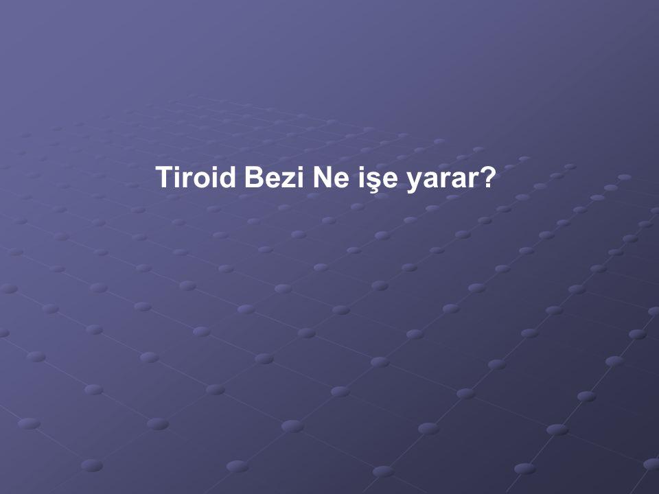 Tiroid Bezi Ne işe yarar