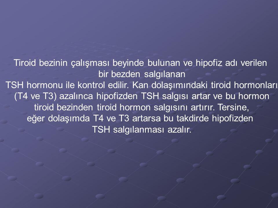 Tiroid bezinin çalışması beyinde bulunan ve hipofiz adı verilen