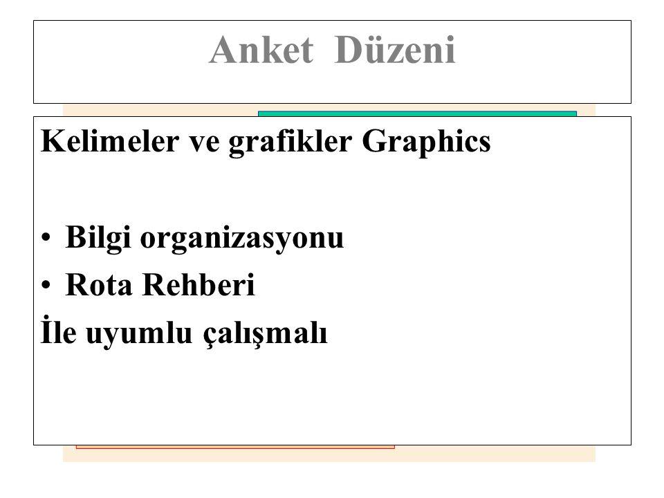 Anket Düzeni Kelimeler ve grafikler Graphics Bilgi organizasyonu