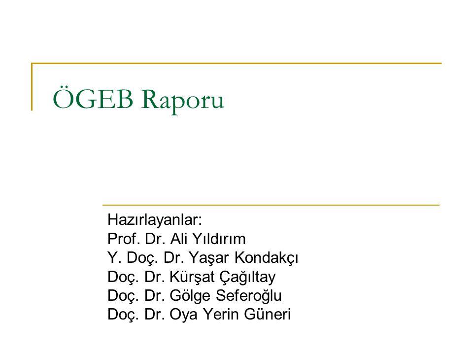 ÖGEB Raporu Hazırlayanlar: Prof. Dr. Ali Yıldırım