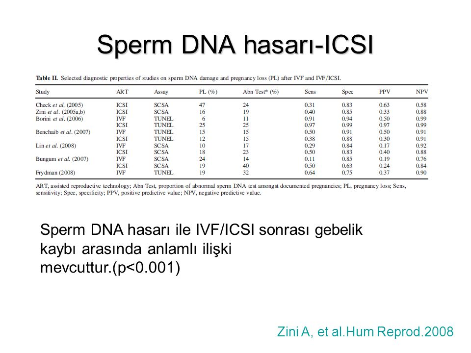 Sperm DNA hasarı-ICSI Sperm DNA hasarı ile IVF/ICSI sonrası gebelik kaybı arasında anlamlı ilişki mevcuttur.(p<0.001)