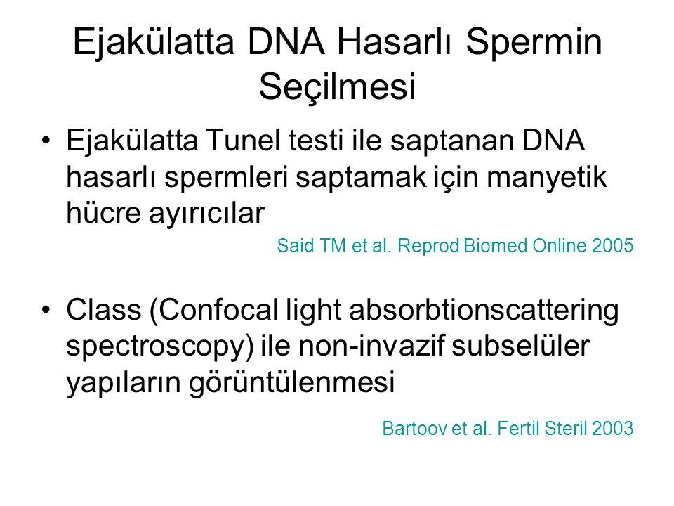 Ejakülatta DNA Hasarlı Spermin Seçilmesi