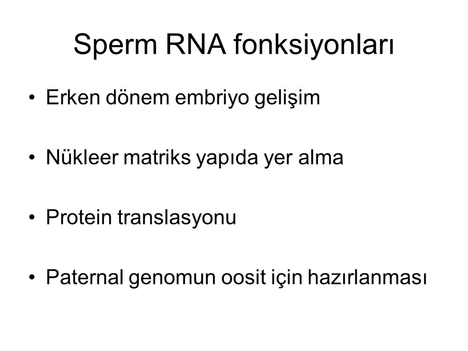 Sperm RNA fonksiyonları