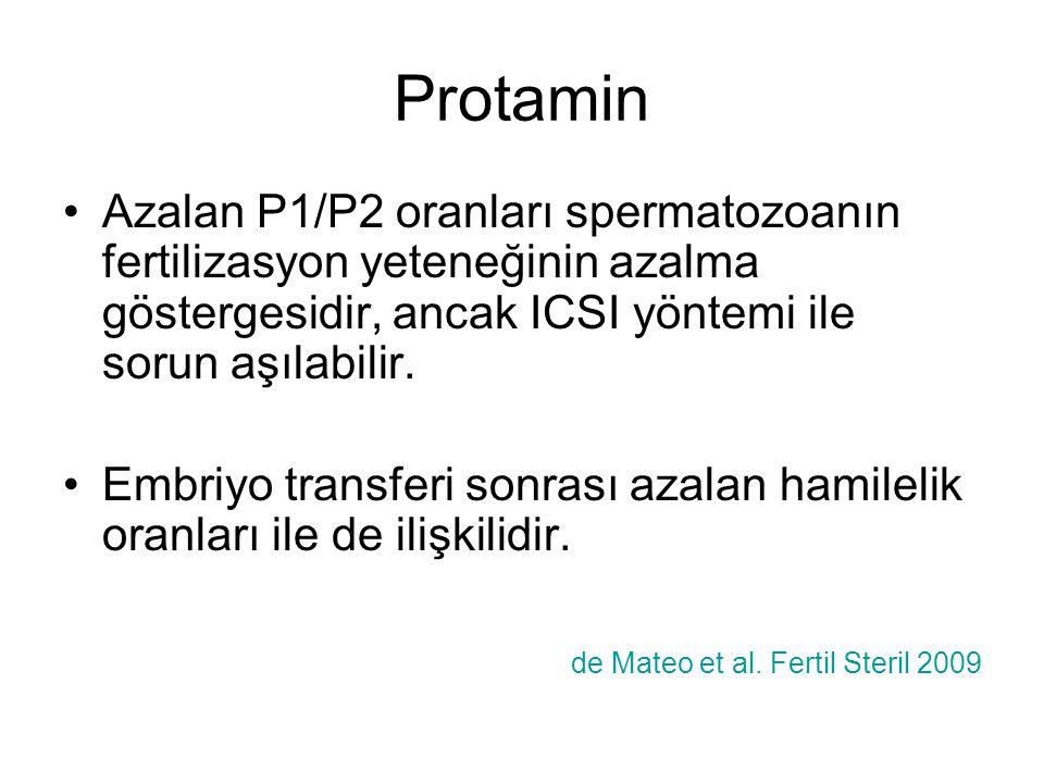 Protamin Azalan P1/P2 oranları spermatozoanın fertilizasyon yeteneğinin azalma göstergesidir, ancak ICSI yöntemi ile sorun aşılabilir.