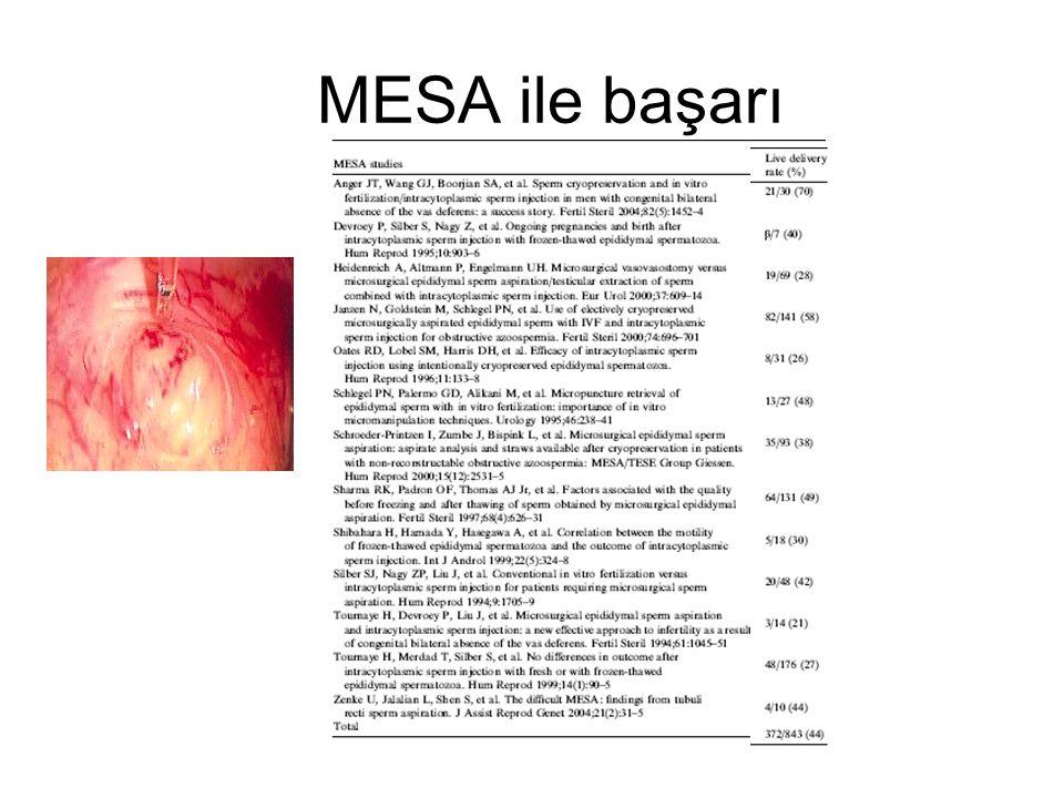 MESA ile başarı