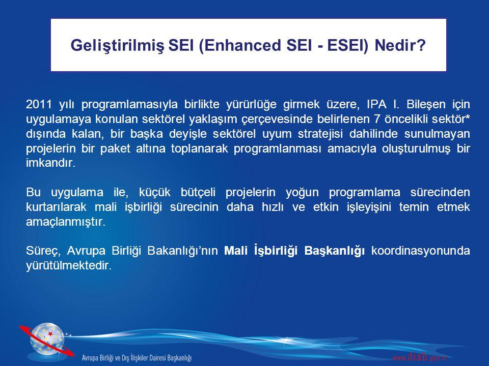 Geliştirilmiş SEI (Enhanced SEI - ESEI) Nedir