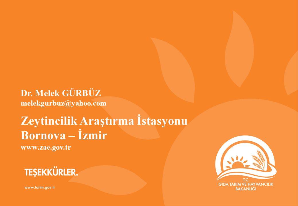 Zeytincilik Araştırma İstasyonu Bornova – İzmir
