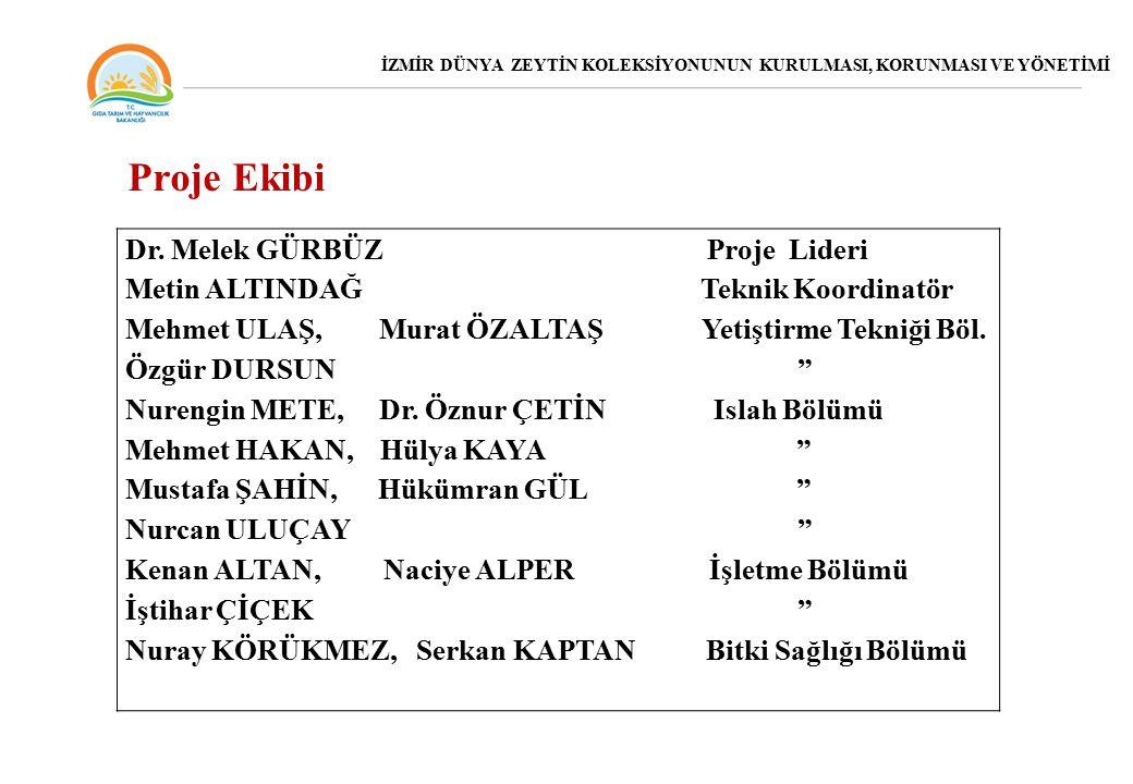 Proje Ekibi Dr. Melek GÜRBÜZ Proje Lideri