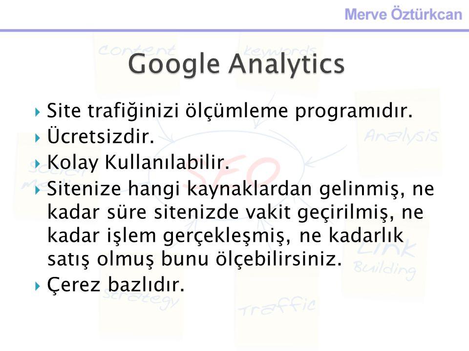 Google Analytics Site trafiğinizi ölçümleme programıdır. Ücretsizdir.