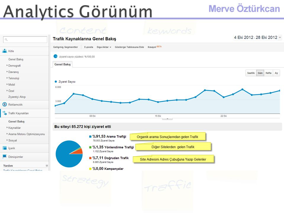 Analytics Görünüm