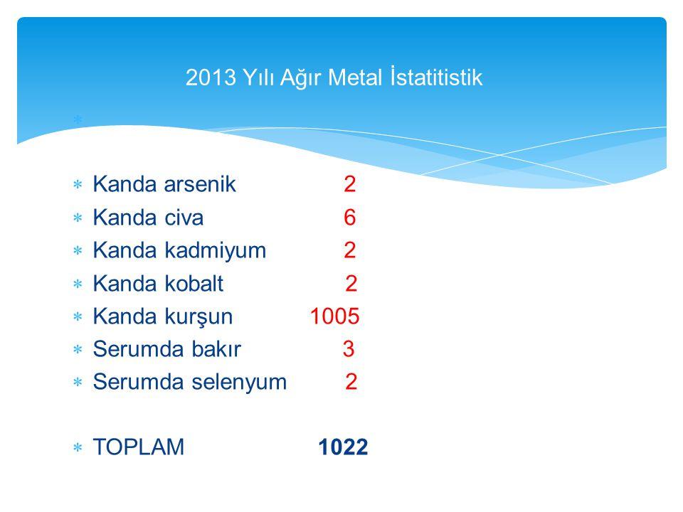 2013 Yılı Ağır Metal İstatitistik