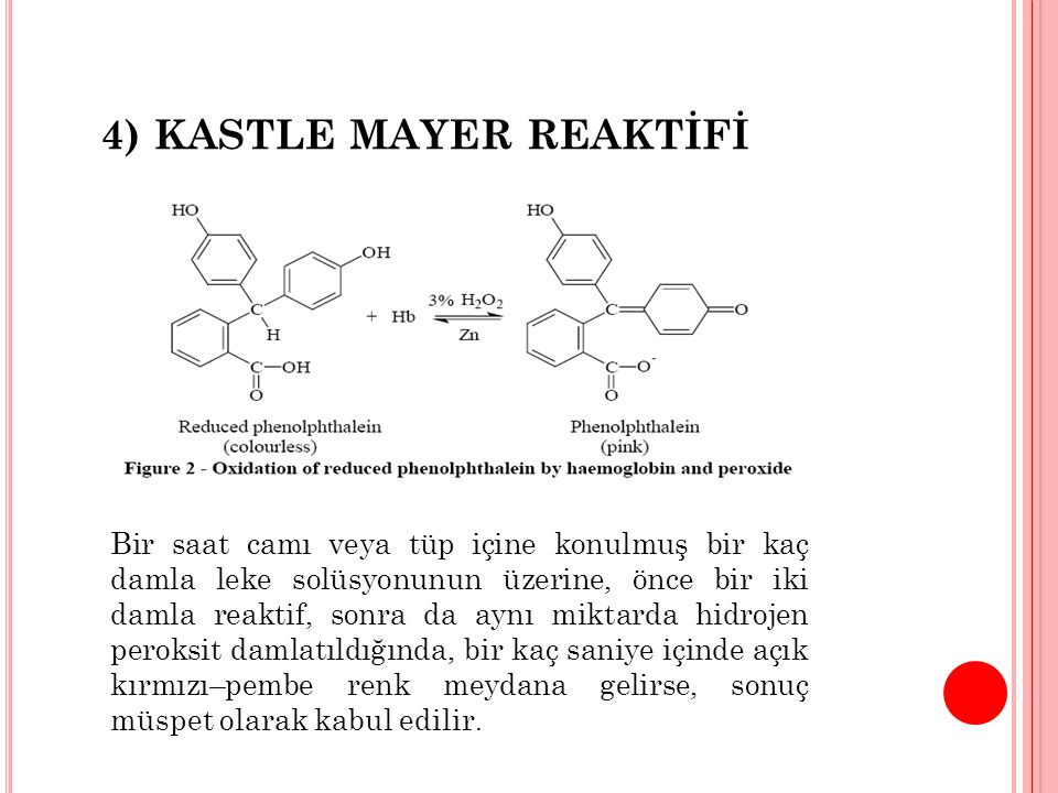 4) KASTLE MAYER REAKTİFİ