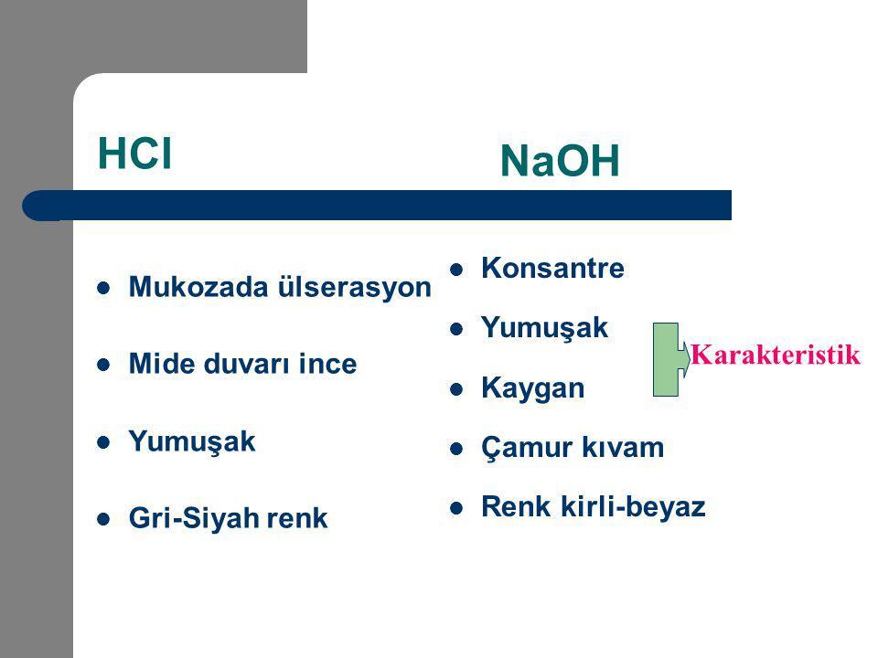 HCl NaOH Konsantre Mukozada ülserasyon Yumuşak Mide duvarı ince Kaygan