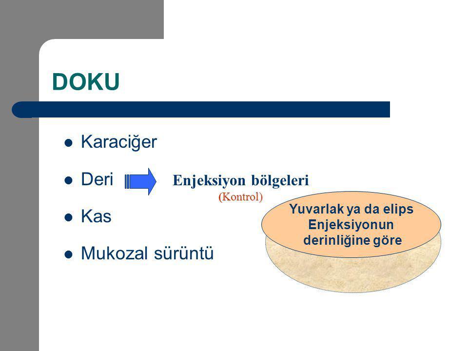 DOKU Karaciğer Deri Kas Mukozal sürüntü Enjeksiyon bölgeleri