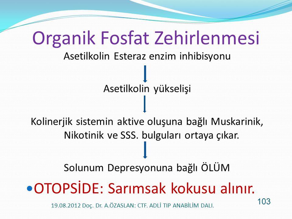 Organik Fosfat Zehirlenmesi