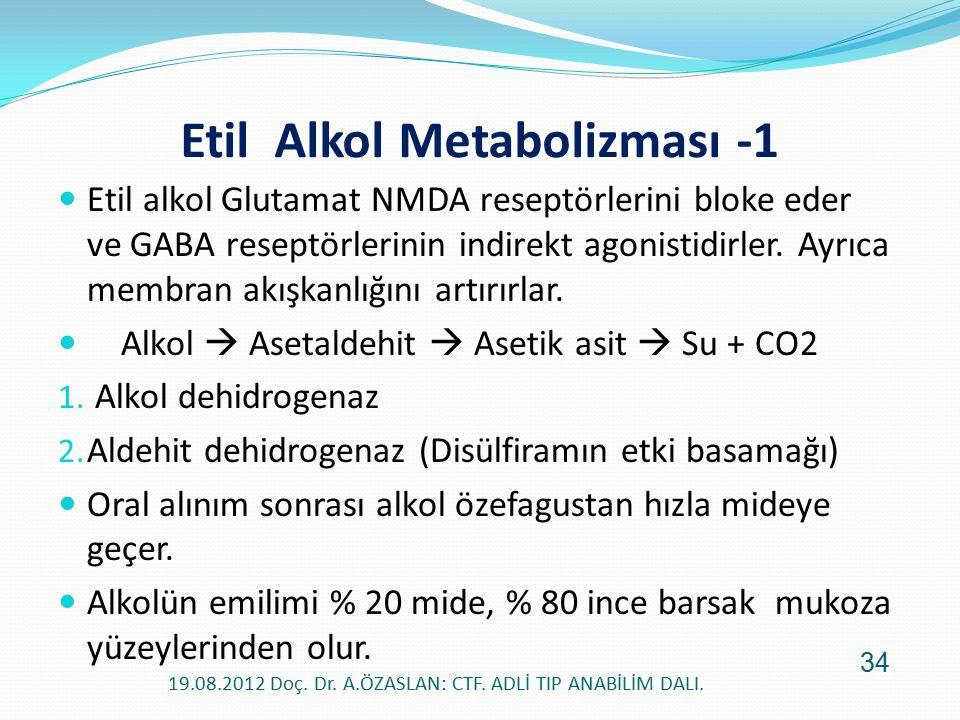 Etil Alkol Metabolizması -1