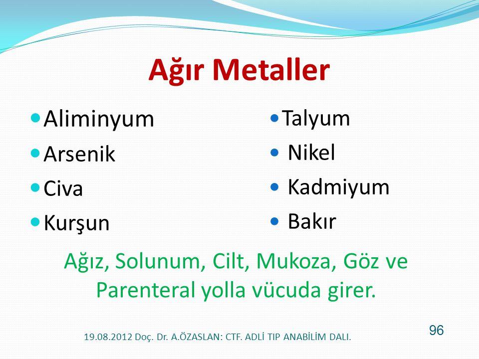 Ağır Metaller Aliminyum Talyum Arsenik Nikel Civa Kadmiyum Kurşun