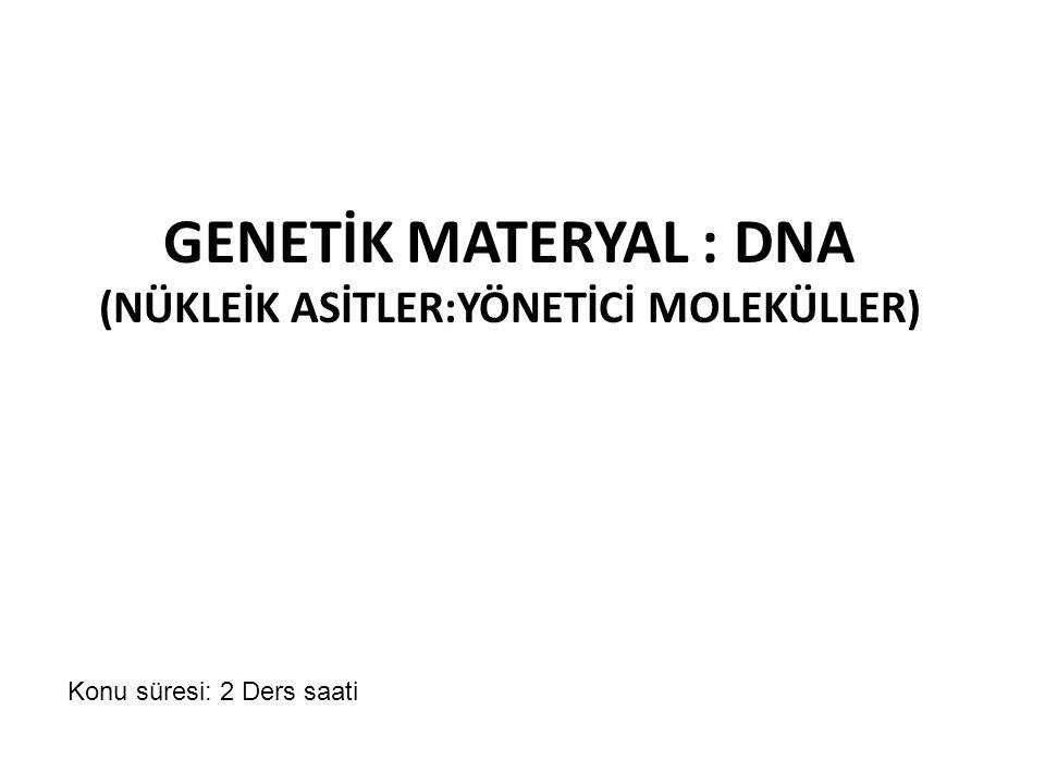 GENETİK MATERYAL : DNA (NÜKLEİK ASİTLER:YÖNETİCİ MOLEKÜLLER)