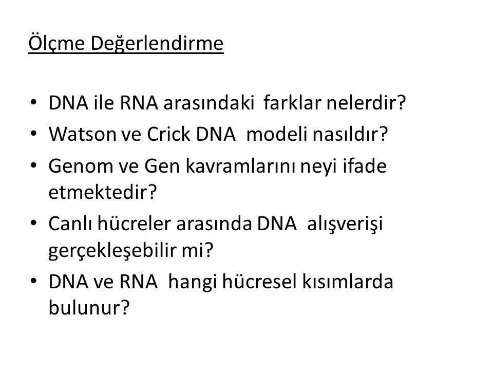 Ölçme Değerlendirme DNA ile RNA arasındaki farklar nelerdir Watson ve Crick DNA modeli nasıldır