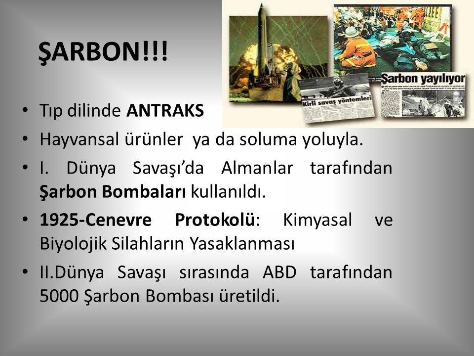 ŞARBON!!! Tıp dilinde ANTRAKS Hayvansal ürünler ya da soluma yoluyla.