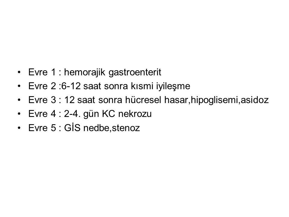 Evre 1 : hemorajik gastroenterit