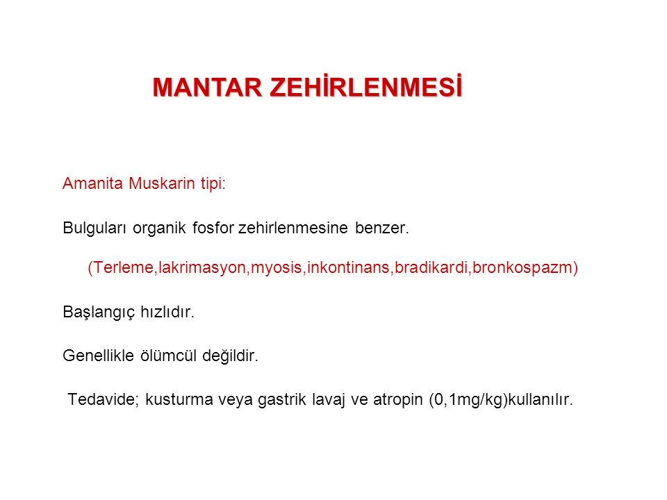 MANTAR ZEHİRLENMESİ Amanita Muskarin tipi: