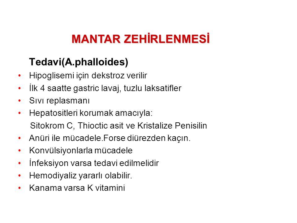 Tedavi(A.phalloides) MANTAR ZEHİRLENMESİ