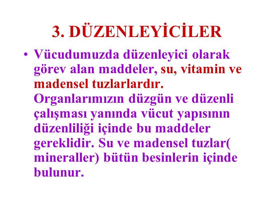 3. DÜZENLEYİCİLER