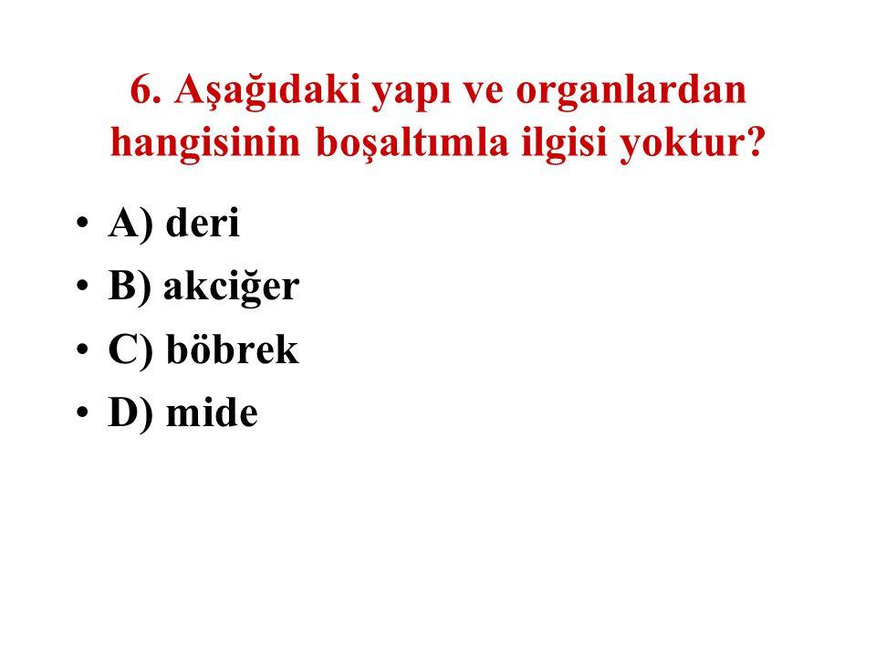 6. Aşağıdaki yapı ve organlardan hangisinin boşaltımla ilgisi yoktur