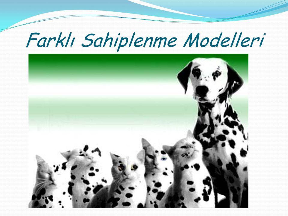 Farklı Sahiplenme Modelleri