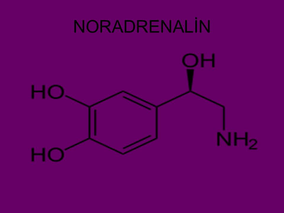 NORADRENALİN