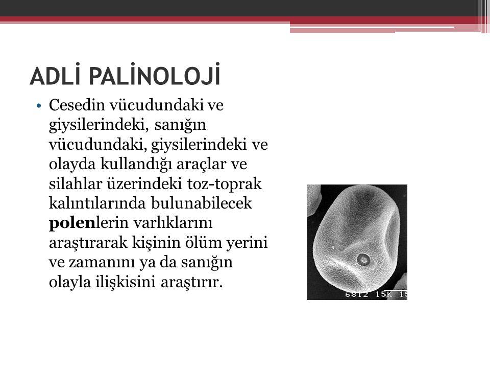 ADLİ PALİNOLOJİ