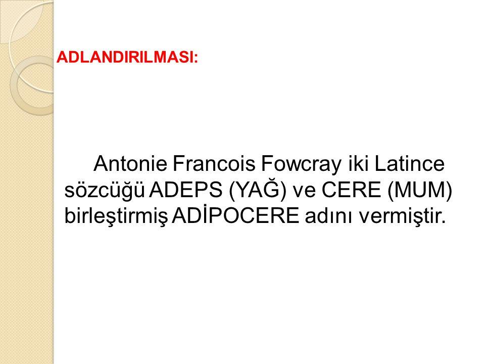 ADLANDIRILMASI: Antonie Francois Fowcray iki Latince sözcüğü ADEPS (YAĞ) ve CERE (MUM) birleştirmiş ADİPOCERE adını vermiştir.
