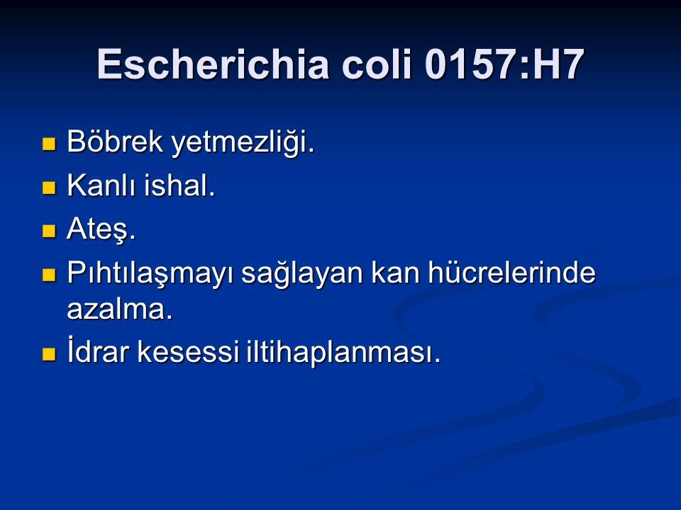 Escherichia coli 0157:H7 Böbrek yetmezliği. Kanlı ishal. Ateş.