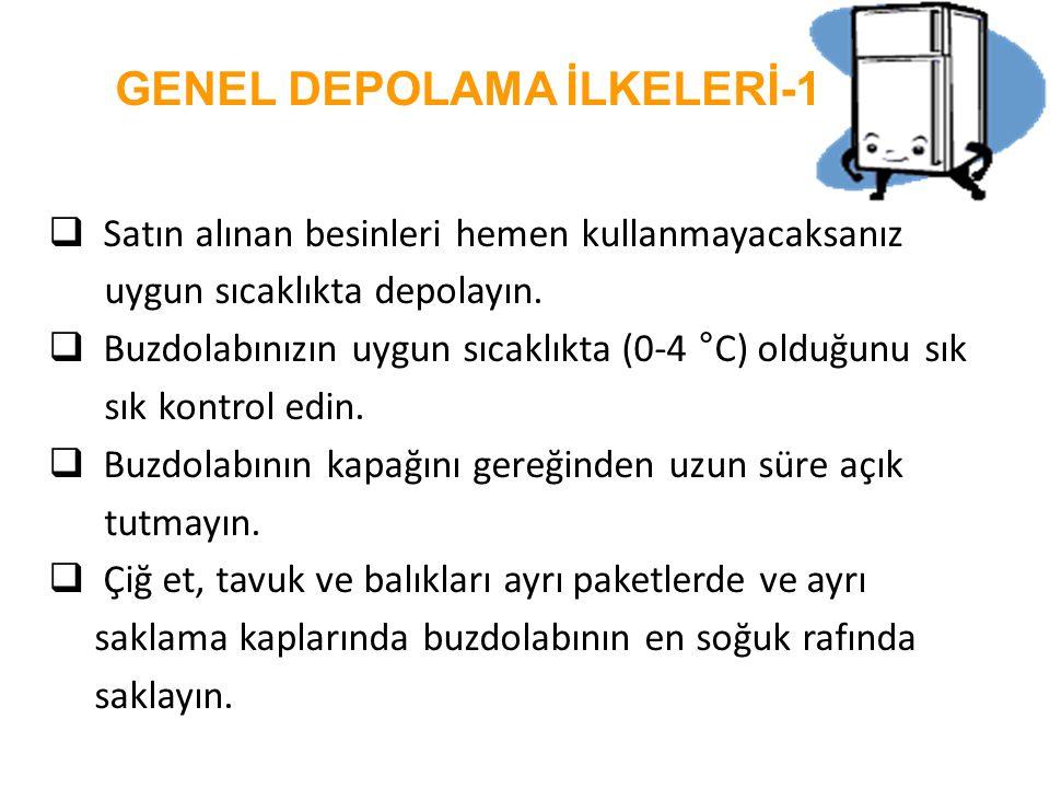 GENEL DEPOLAMA İLKELERİ-1