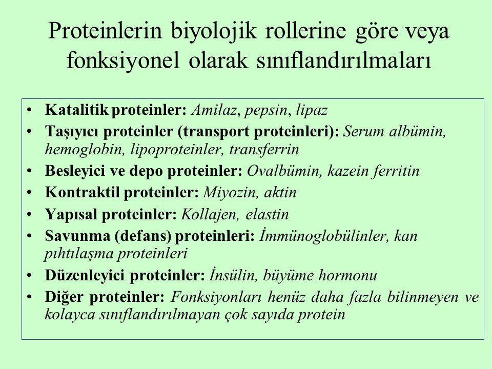 Proteinlerin biyolojik rollerine göre veya fonksiyonel olarak sınıflandırılmaları