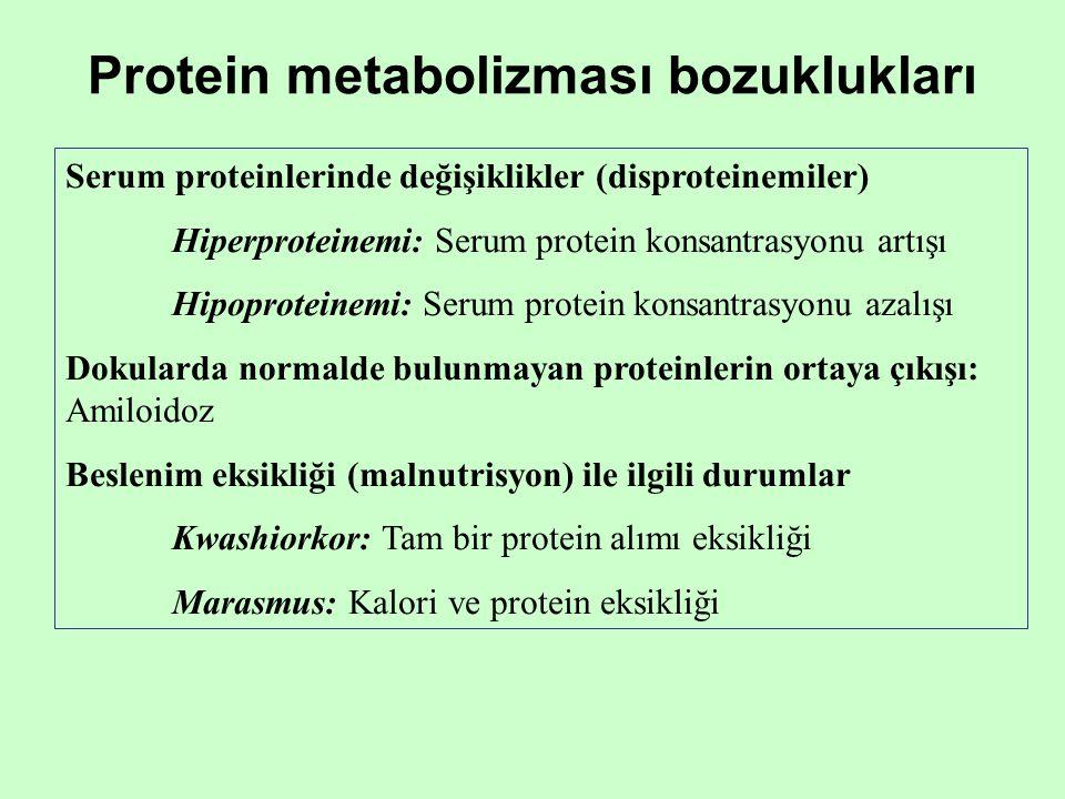 Protein metabolizması bozuklukları