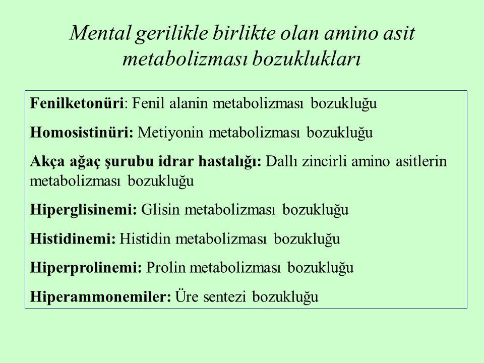 Mental gerilikle birlikte olan amino asit metabolizması bozuklukları