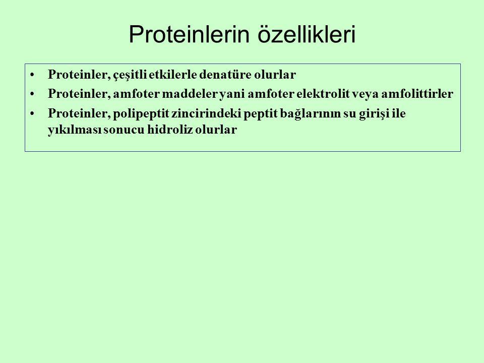 Proteinlerin özellikleri