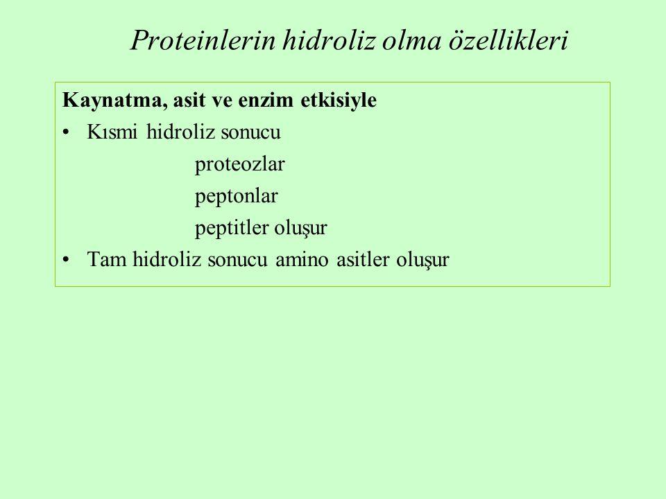 Proteinlerin hidroliz olma özellikleri