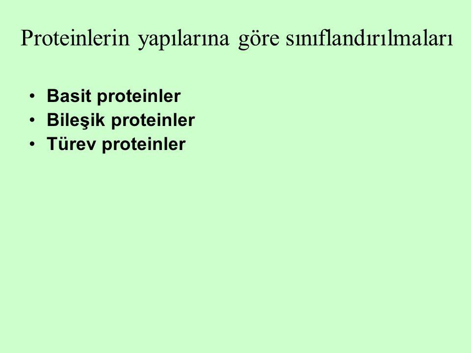 Proteinlerin yapılarına göre sınıflandırılmaları