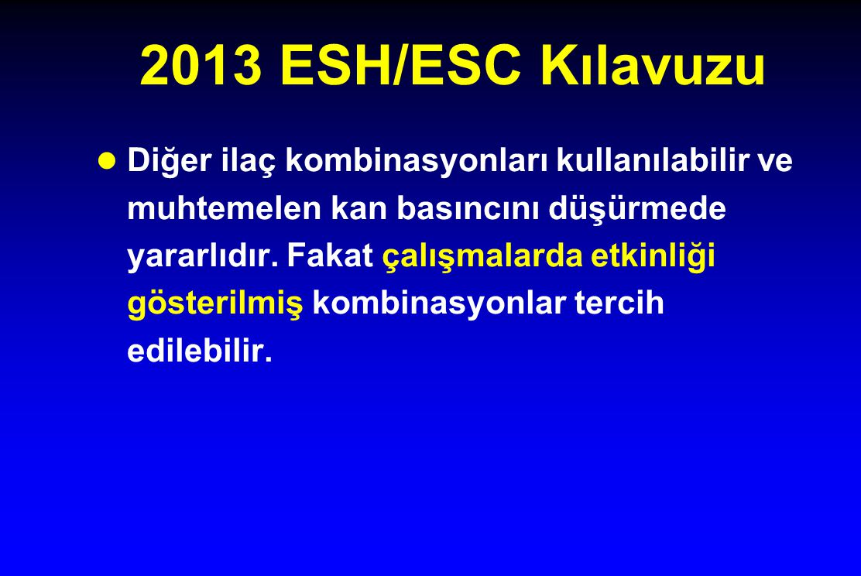 2013 ESH/ESC Kılavuzu