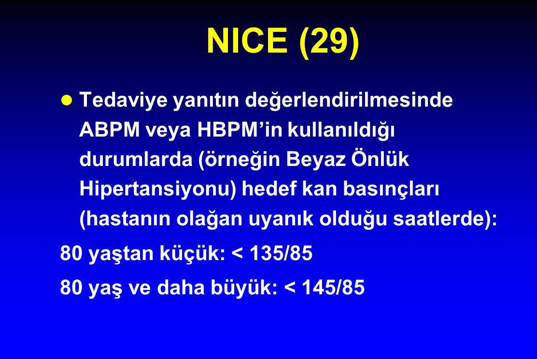 NICE (29)