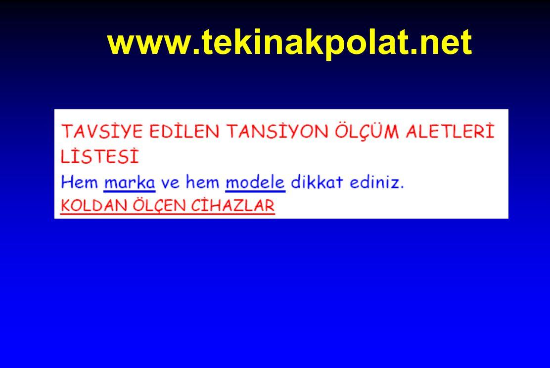 www.tekinakpolat.net
