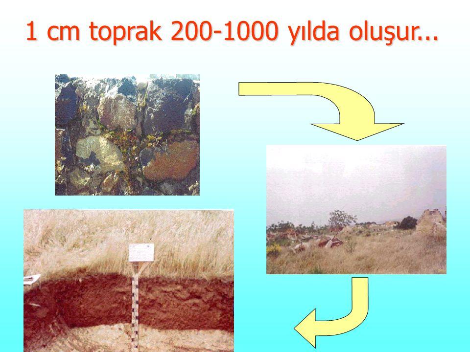 1 cm toprak 200-1000 yılda oluşur...