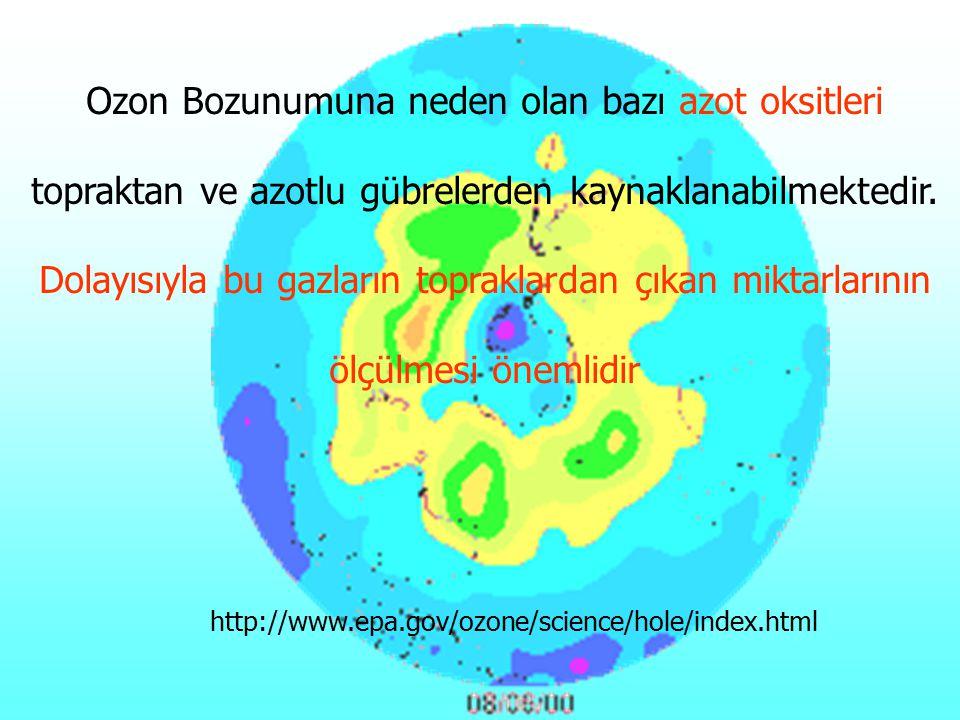 Ozon Bozunumuna neden olan bazı azot oksitleri