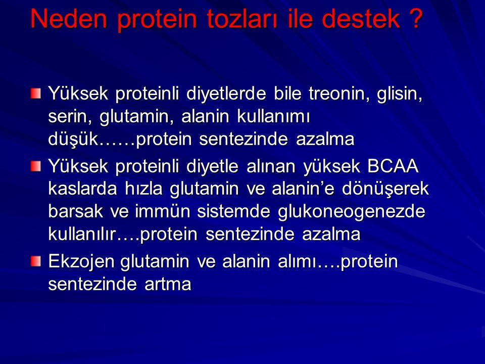 Neden protein tozları ile destek