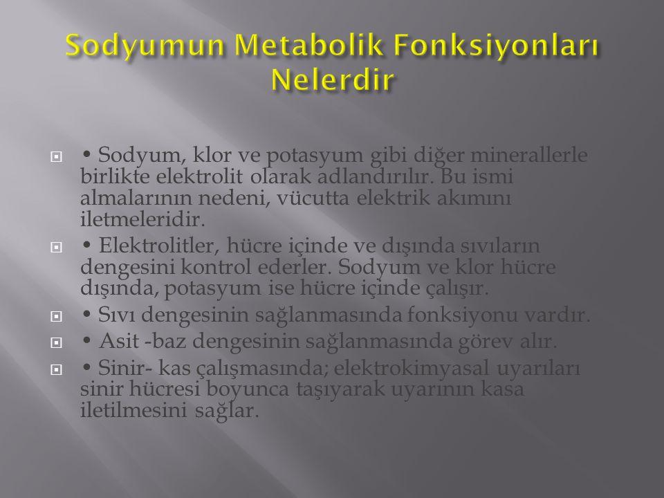 Sodyumun Metabolik Fonksiyonları Nelerdir