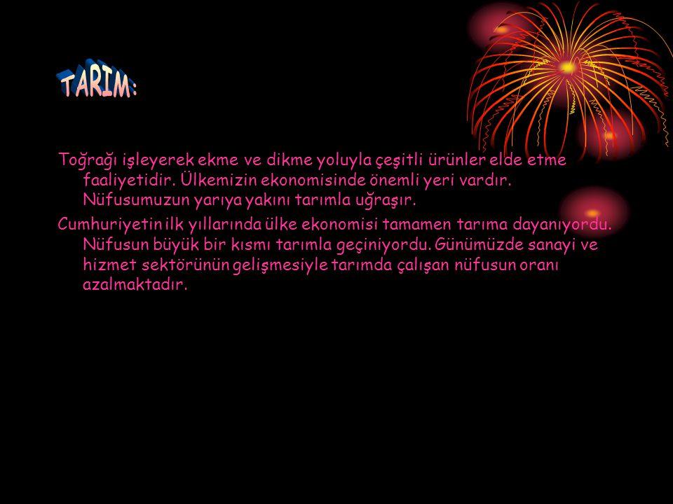 TARIM: