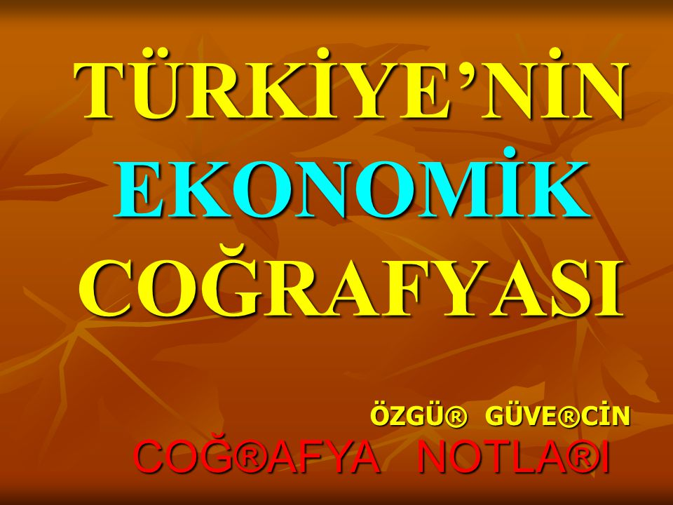 TÜRKİYE'NİN EKONOMİK COĞRAFYASI